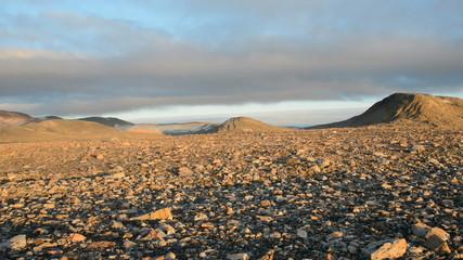 Desert stony plateau wide shot