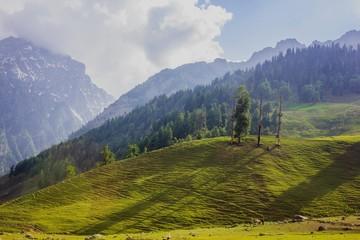 Valley at Sonamarg, Kashmir, India on sunny day