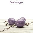 canvas print picture - eggs
