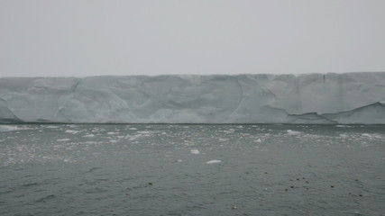 Sailing along a glacier reaching the sea 3