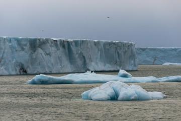 Glacier reaching the sea