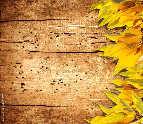 Autumn background with yellow foliage and old wood
