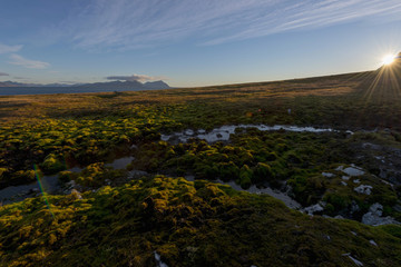 Spitzberg tundra