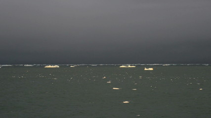 Ice cakes floating on a grey sea