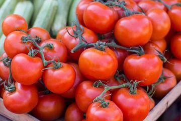 Fresh Red Ripe Tomatoes