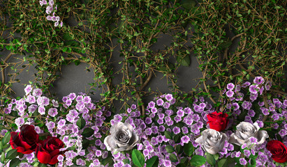 flowers rose holiday background on gray wall