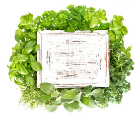 Fresh herbs with wooden board for your text