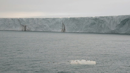 Sailing along a glacier reaching the sea 7