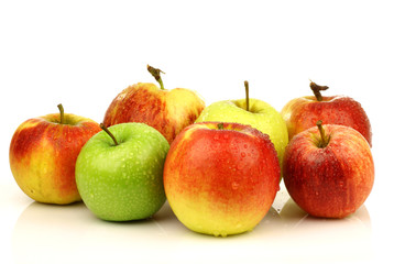 assorted Dutch apple cultivars on a white background