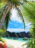 Palm beach - 78641336