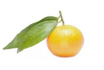 Tangerine, mandarin isolated on white background