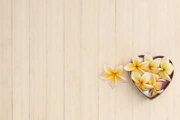 White Plumeria flowers on wood