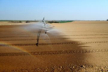 agriculture, earth, watter but, irrigation, spring, landscape,
