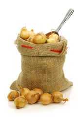 fresh pearl onions in a burlap sack and a aluminum scoop