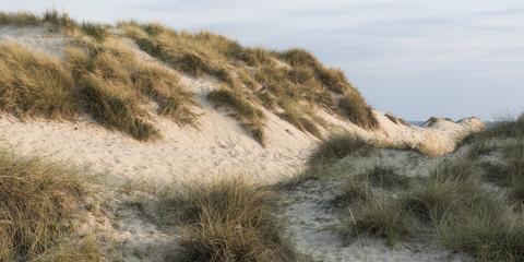 Dunes in Mallorca