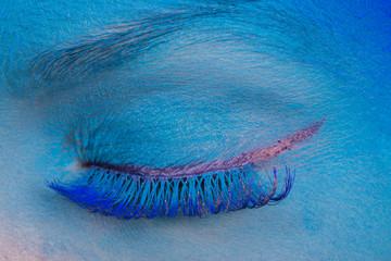 Eye Makeup. Creative eye makeup