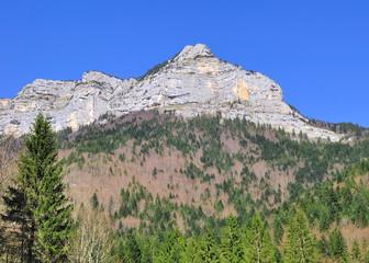montagne rocheuse entourée de forêt