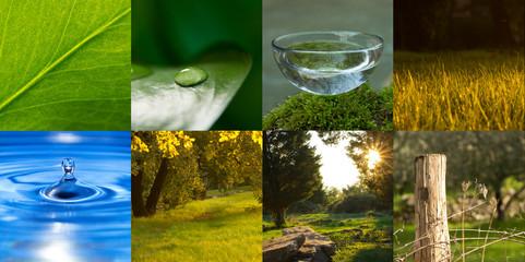 composizione natura, acqua, campagna