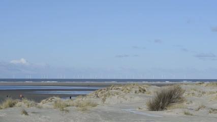 Dünen am Nordsee Strand auf Borkum