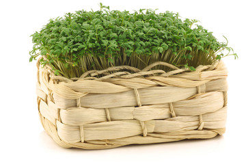 fresh watercress in a woven basket on a white background