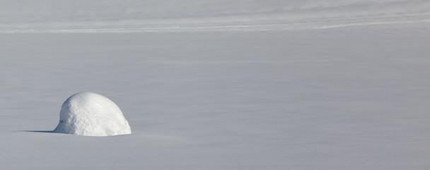 Neve fresca e accumulo solitario