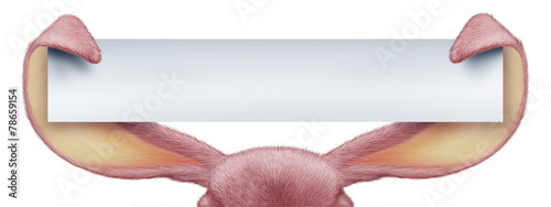 canvas print picture Easter Rabbit Horizontal Sign