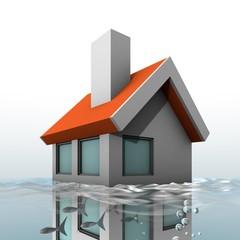 Huis in het water