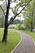 canvas print picture - Weg in einem Park mit Gänse