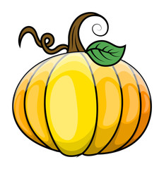 Pumpkin Vector Illustration