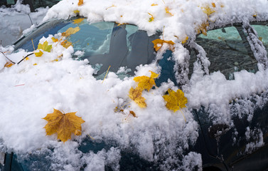 Leaves and snow on car exterior