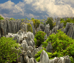 Stone forest Shi Lin. National park in Yunnan province, China