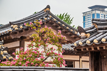 Traditional old korean building with tree and flowers