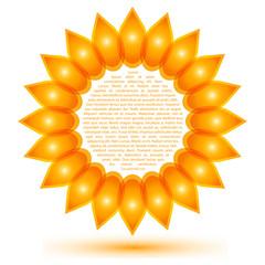 Beautiful sunflower icon, shape