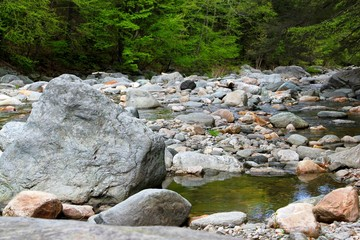 rocky new england stream in the woods