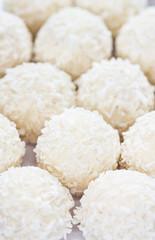 Assorted Coconut Pralines
