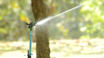 Head of Water sprinkler is spraying water in the garden
