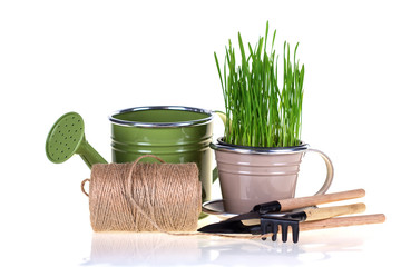 Green grass and garden tools