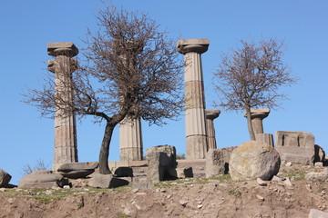 Tapınak taşları