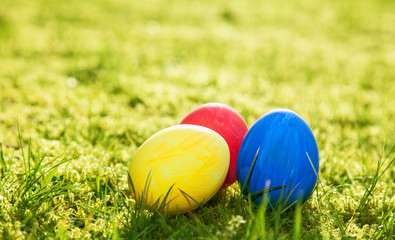 Easter eggs lying on meadow