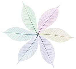 roue de feuilles