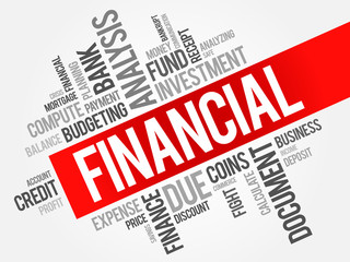 FINANCIAL word cloud, business concept