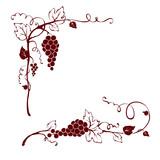 Fototapety Vintage design elements -- vine