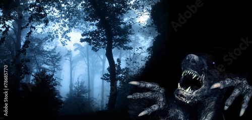 AluDibond Wald Monster in night forest