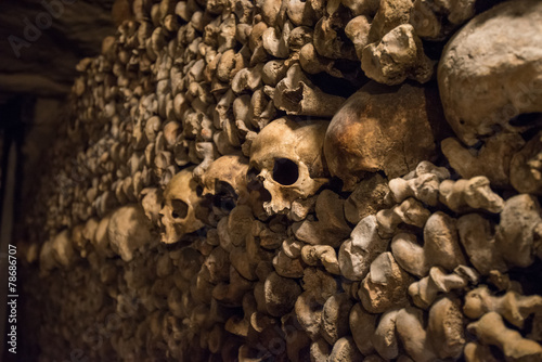 Skulls and bones in Paris Catacombs Photo by javarman