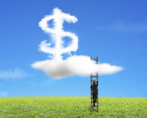 Businessman climbing wood ladder with dollar sign shape cloud