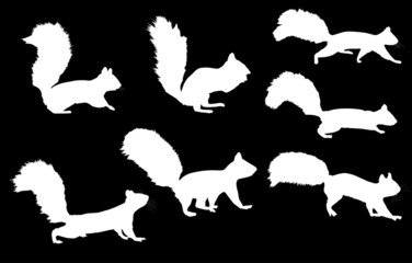 seven squirrel silhouettes onblack background