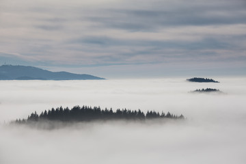 inversion fog in black forest, southwest Germany