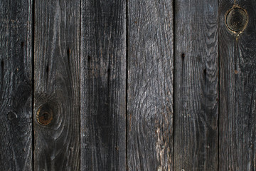 Grey wooden board background.