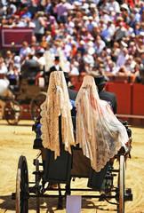 Coche de caballos, mujeres con mantilla, Andalucía, España