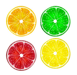 Slice of fresh citrus fruits isolated on white background